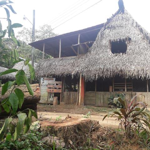 Cultura y tradición indigena