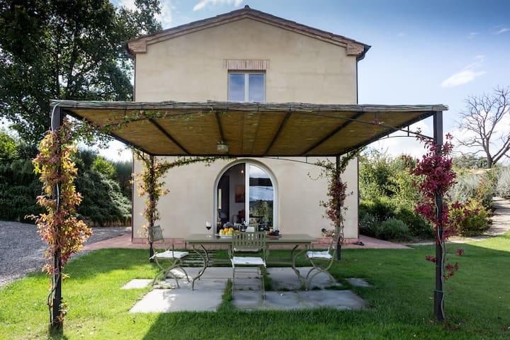 Farmhouse nestling in the middle of a vineyard - Petrignano del Lago - House