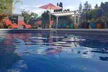 24'x12' kidney pool