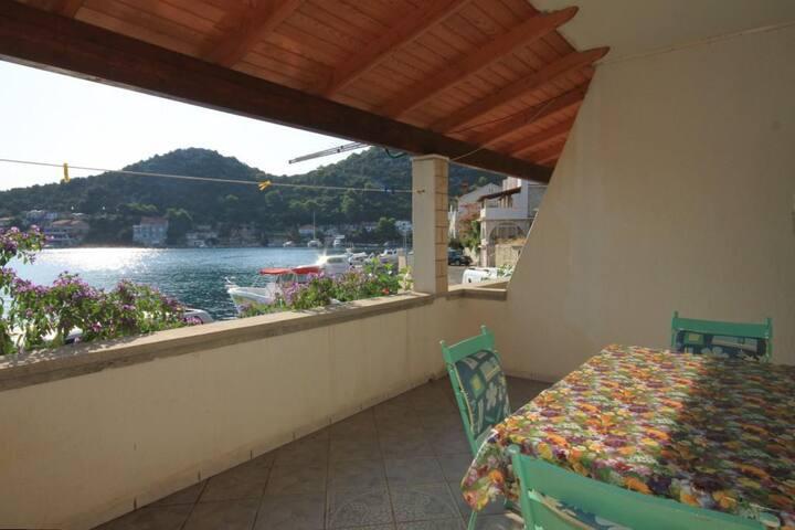 One bedroom apartment near beach Zaklopatica, Lastovo (A-8341-b)