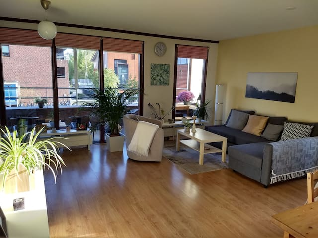 Big apartment near Amsterdam (15 minutes)