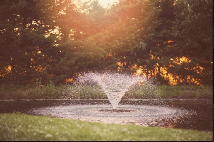 Taken by a guest who enjoyed her evenings relaxing in the yard surrounded by nature and the rhythmic sound of the fountain.