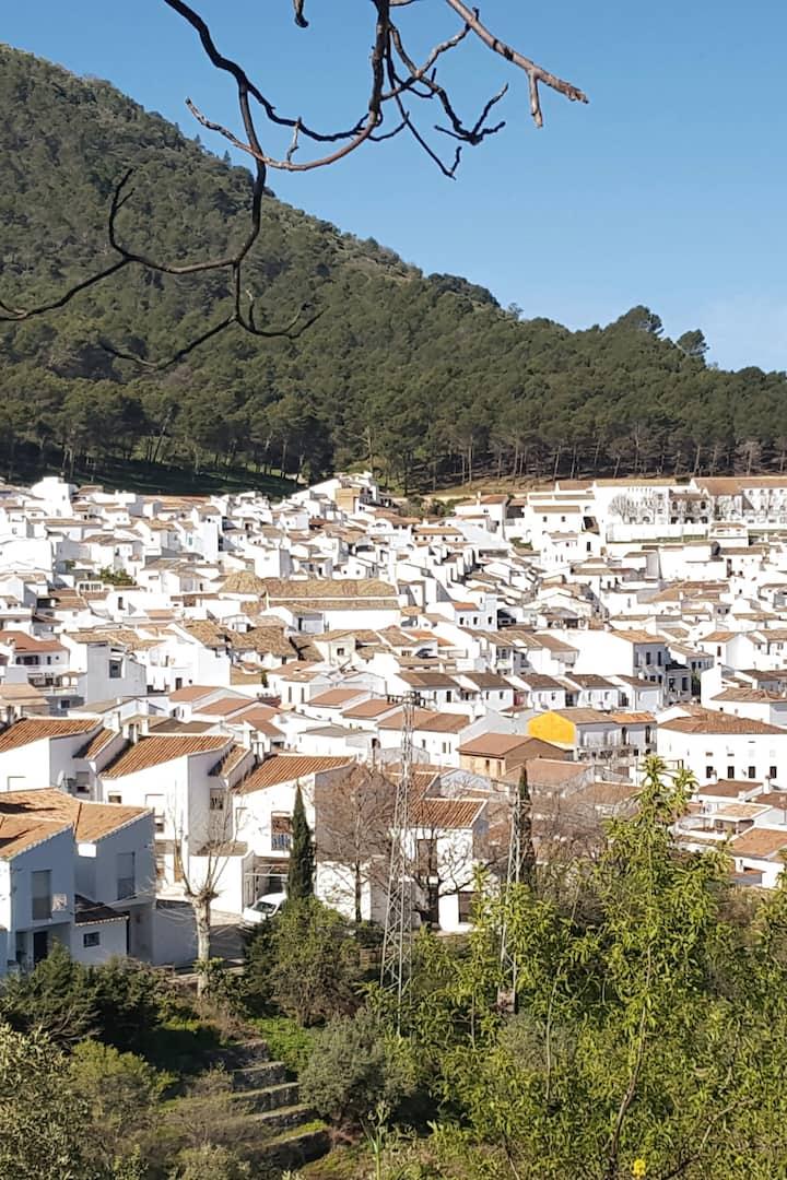 Our White Village