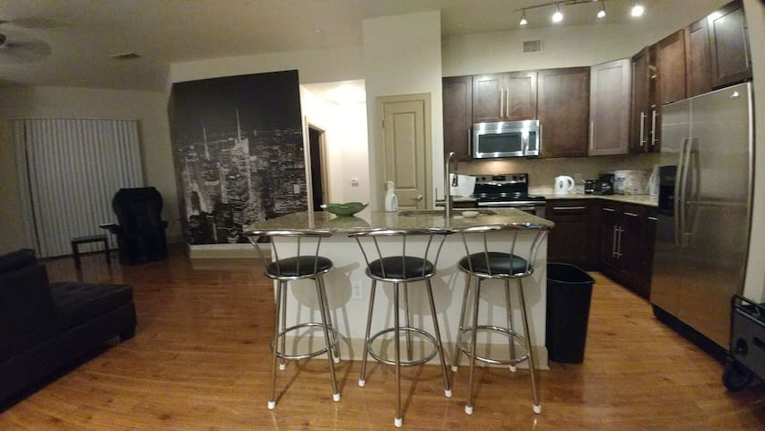 2 Bed / 2 Bath Apt - Med Center/Downtown/NRG (sk)