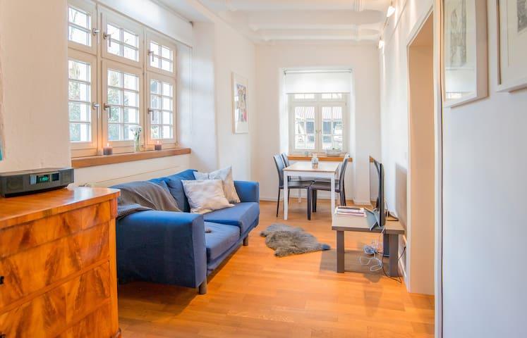 "Business-Apartment ""Jala"" im Richterhaus"