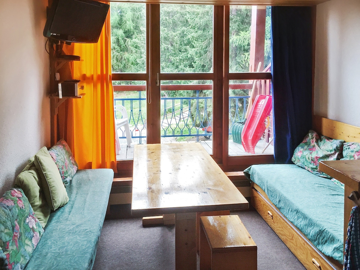 Comfortable Apartment W/balcony   Apartments For Rent In  Bourg Saint Maurice, France