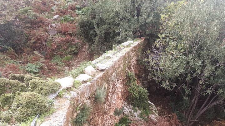 Little bridge on the path