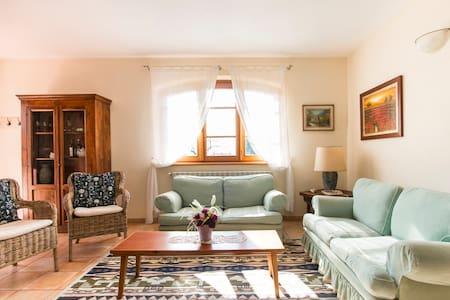 villa annina - Camaiore - Villa