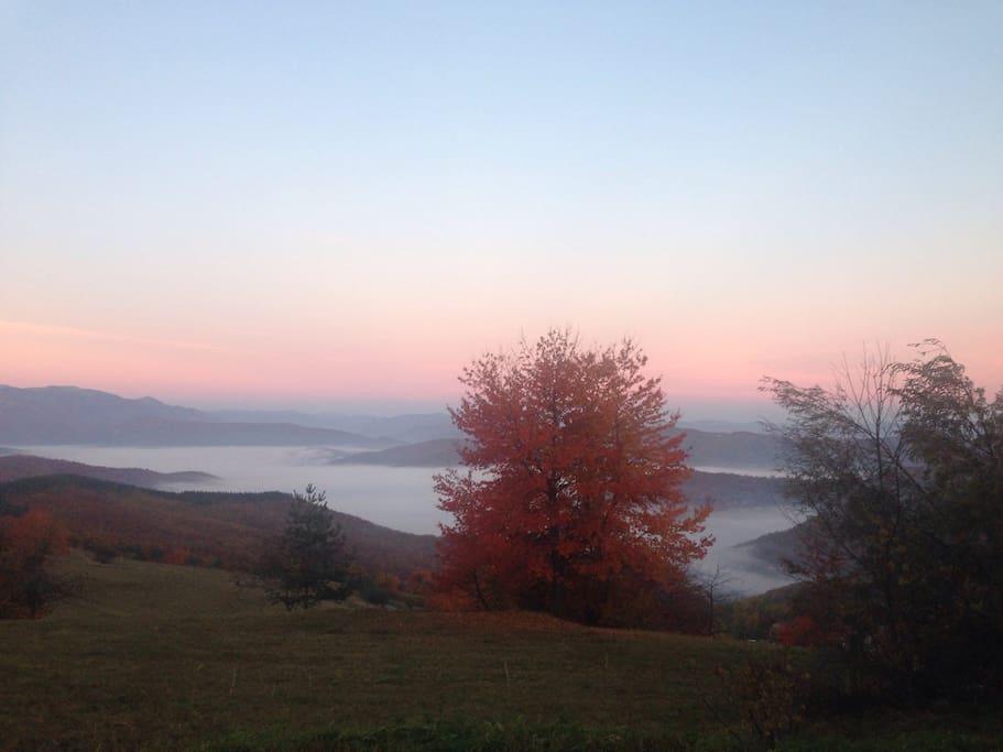 Die ausicht Herbst in Nebel