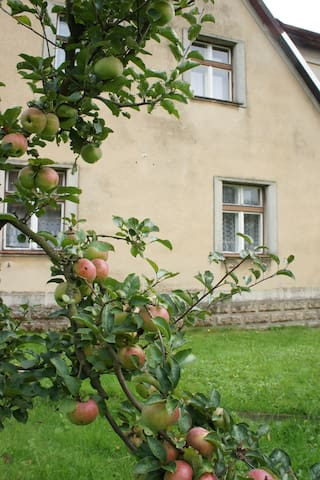 Haus Felsen Adrspach (Adršpach) - Adršpach - Maison