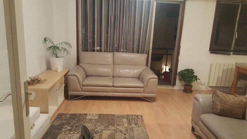 Chambre dans un appartement spacieux et chaleureux