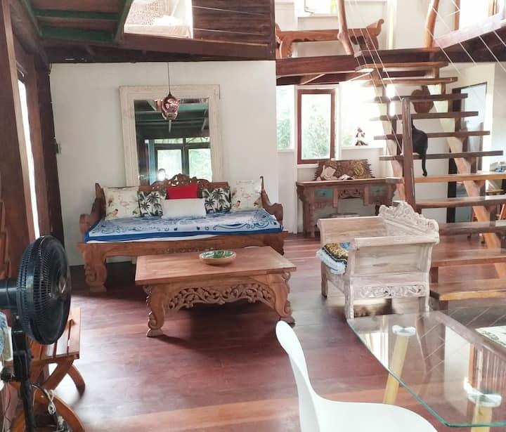 Casa Bohemia en Manzanillo Town