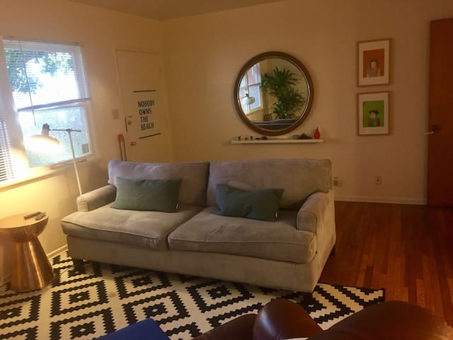 Room in stylish apt with friendly non-shedding dog