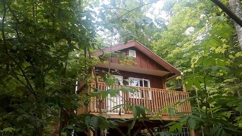 Red Robin Camping Bunk Los huéspedes deben ser 19+ Max de 2