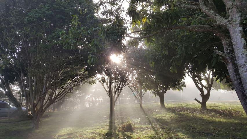 CHÁCARA CONQUISTA - Natureza exuberante e Diversão