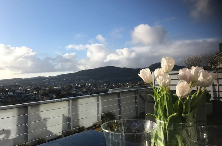 Private apartment with an amazing view - Bergen - Apartment