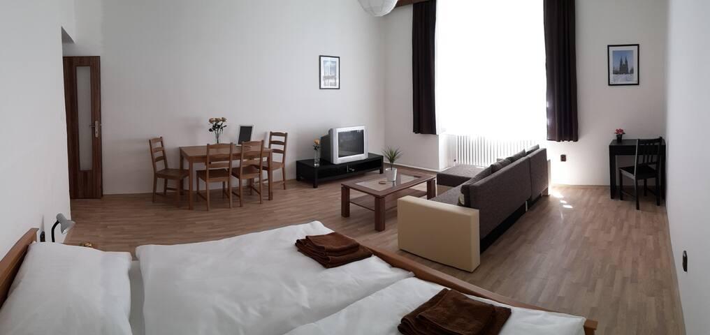 Letna FK Apartment