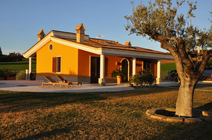 Camera Matrimoniale (P) - Sant'Elpidio a mare - Bed & Breakfast