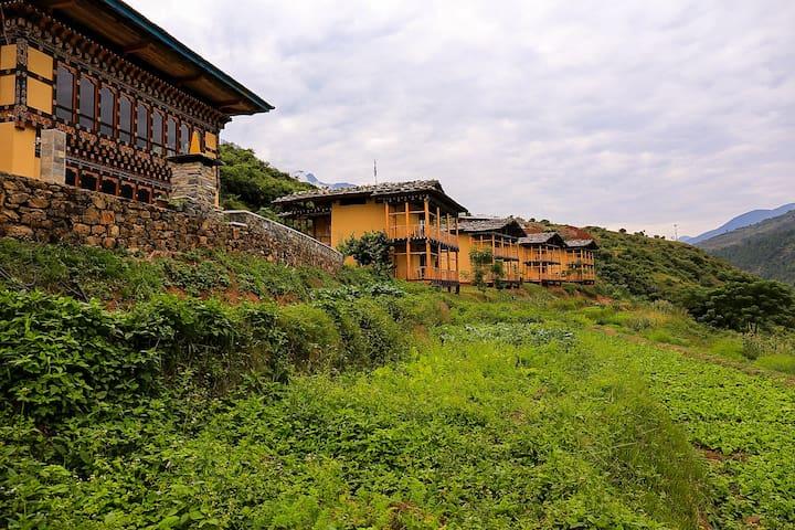wangdue ecolodge - Wangdue Phodrang - Bed & Breakfast