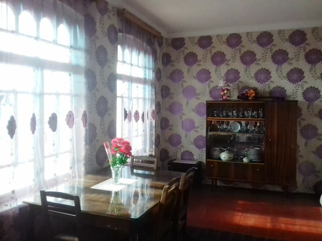 House in the village 40 kilometers from Tbilisi