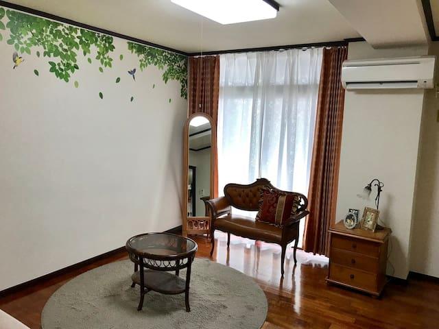Roomy apartment near city centre