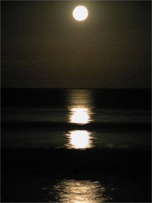 Maybe you will be lucky to book over a full moon period?