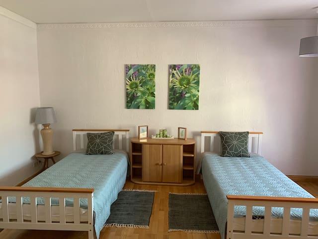 Friedrich Haus (Friends room)
