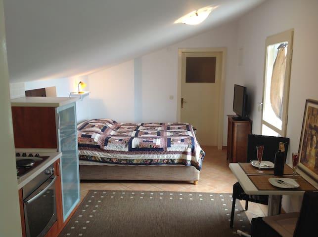 Studio apartment (cozy and panoramic)