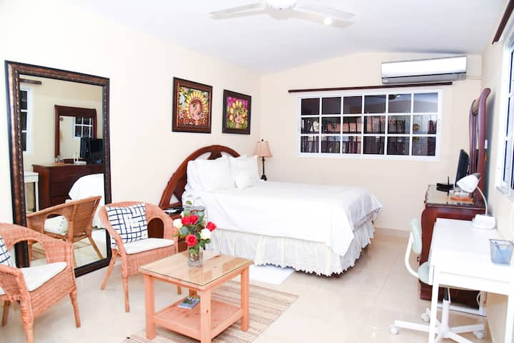Cozy Studio in the Heart of Santo Domingo