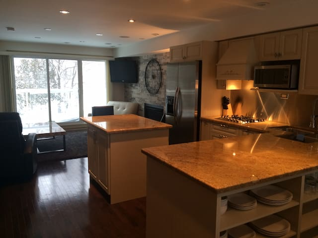 Executive Chalet-7min to Blue Mtn. - Collingwood - Apartment