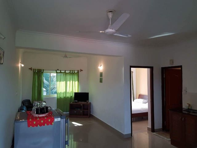 Spacious Apt with balcony near Candolim beach.