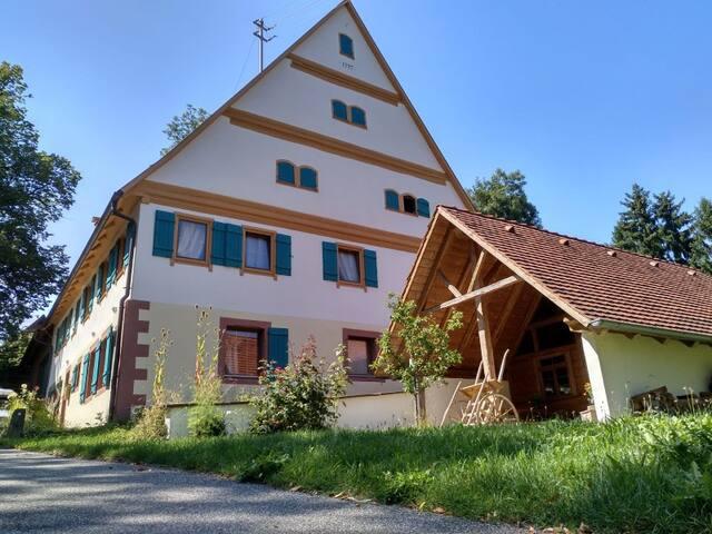 Urgemütliche Wohnung mit Holzofen