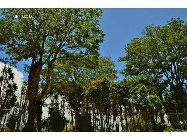 NIce apartment near Park La Sabana!! Single person - San José - Appartement