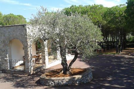 Piccola Casa in Grande Parco - Selva di Fasano