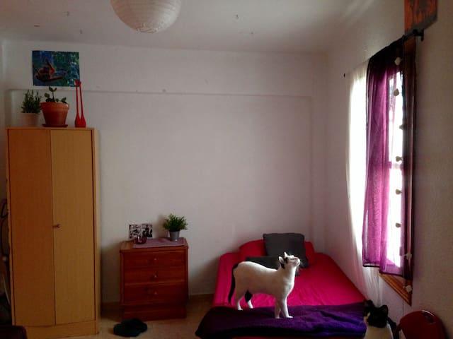 Habitación individual en Benimaclet