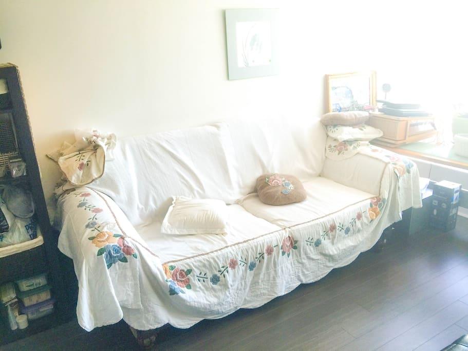 Living room inside suite