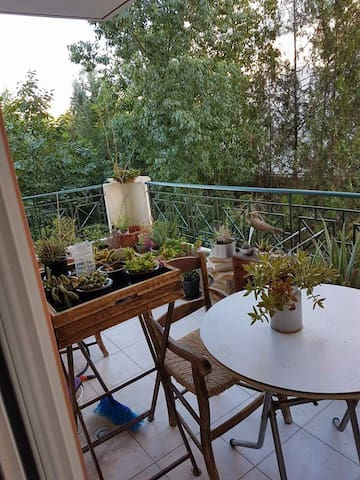 Chris apartment (70sqm)