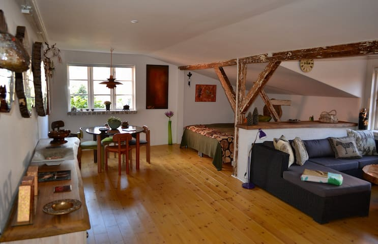 lovely central studio apartment  - Svendborg - Appartamento