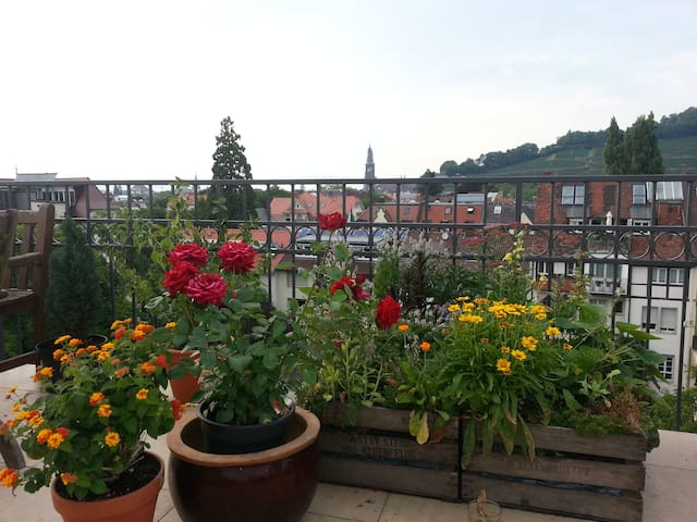 Appartement with 55 m² roof terrace - Freiburg - Appartement
