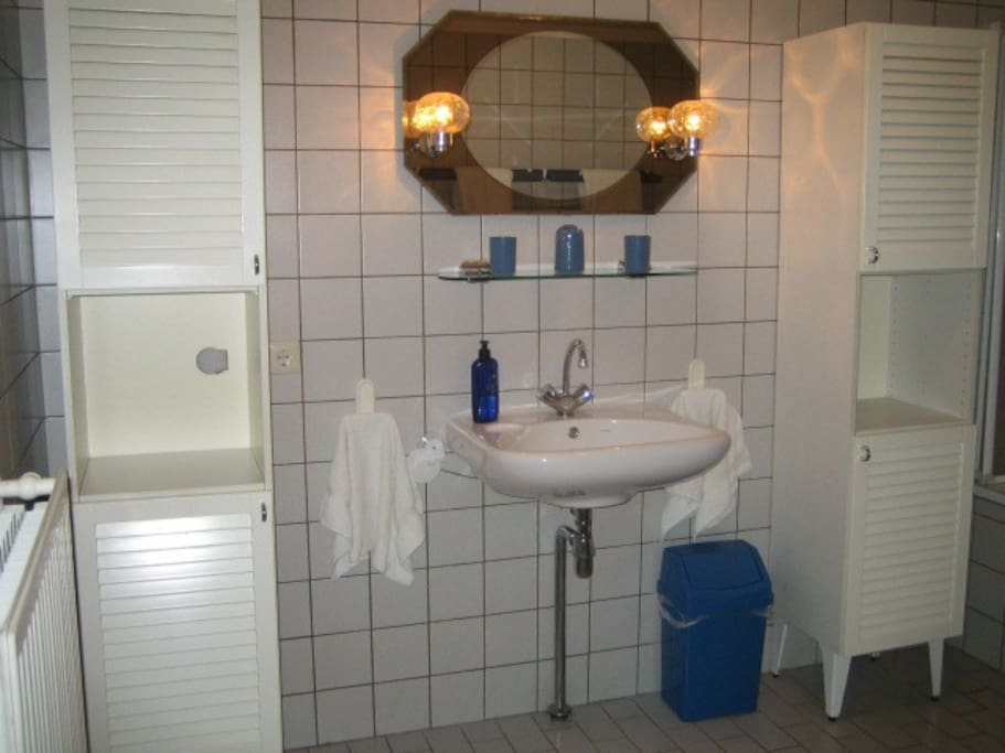 Bathroom - has a shower in the bathtub