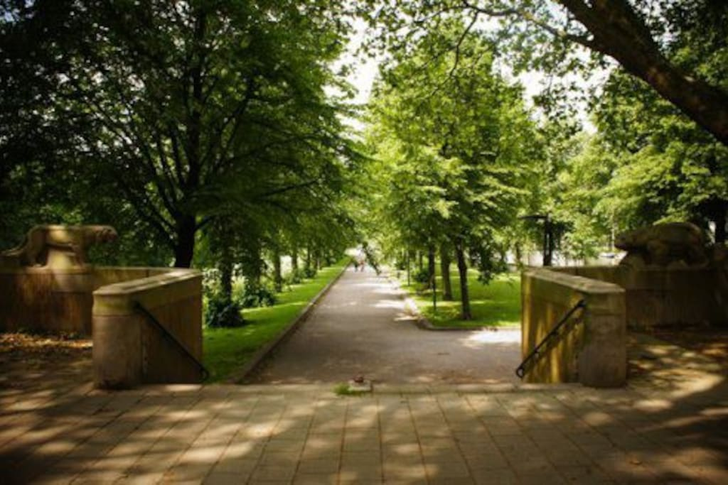Erasmuspark, a beautiful park around the corner. Beautiful and quiet in the morning, but bustling in the afternoon sun.