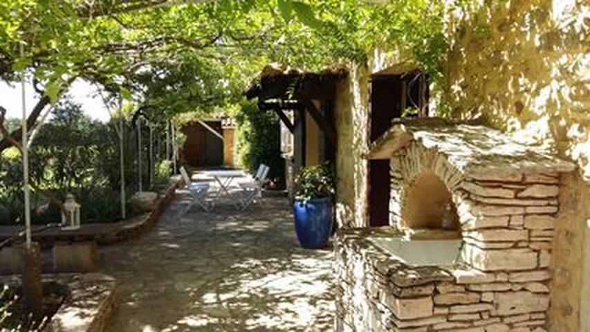 La terrasse plein sud, ombragée par la glycine et la vigne