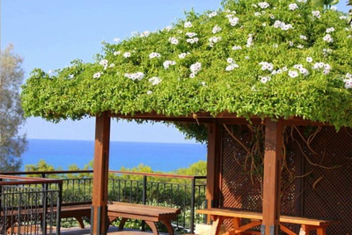 Villa near Paphos for lux holidays(14) - Argaka - บ้าน