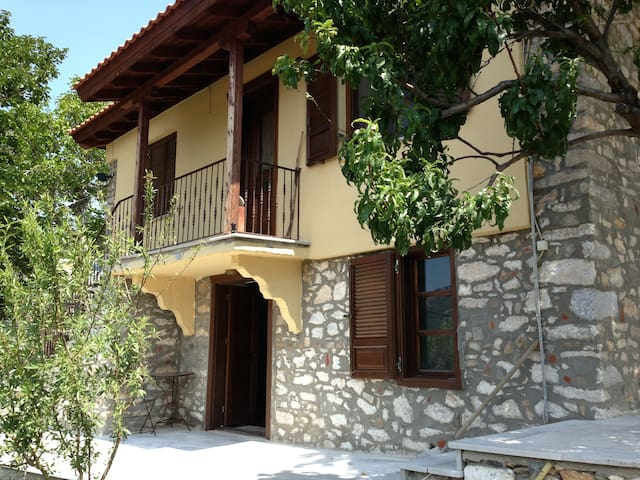 Traditional renovated studio 40sqm - Thasos - Apartment