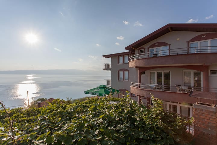 Discover the beauties of Ohrid Lake - Dolno Konjsko - Villa