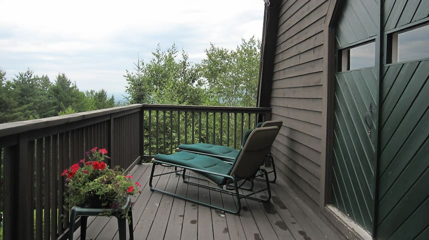 White Mt. Barn Guest House w/ Views - Littleton