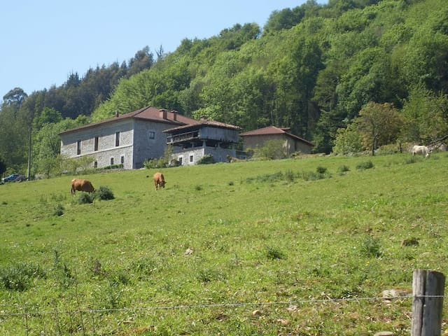 CHARMING RURAL HOUSE ¨LA CASONA¨ - Asturias - Other