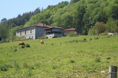 CHARMING RURAL HOUSE ¨LA CASONA¨ - Asturias