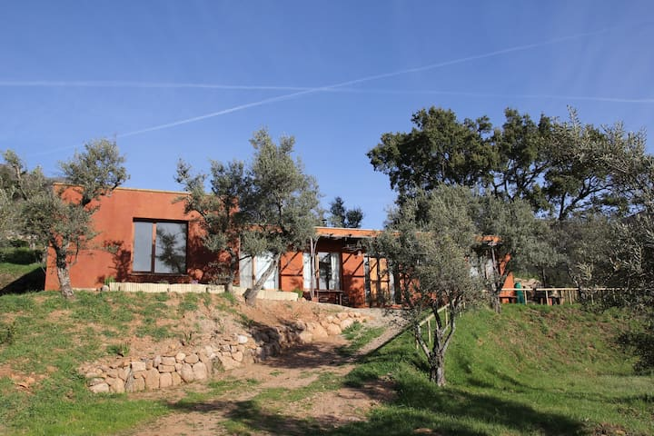 bioclimatic house immersed in natur - Acebo - Casa