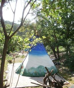 nomadica eco retreat portugal - Barril de Alva - 圆锥形帐篷